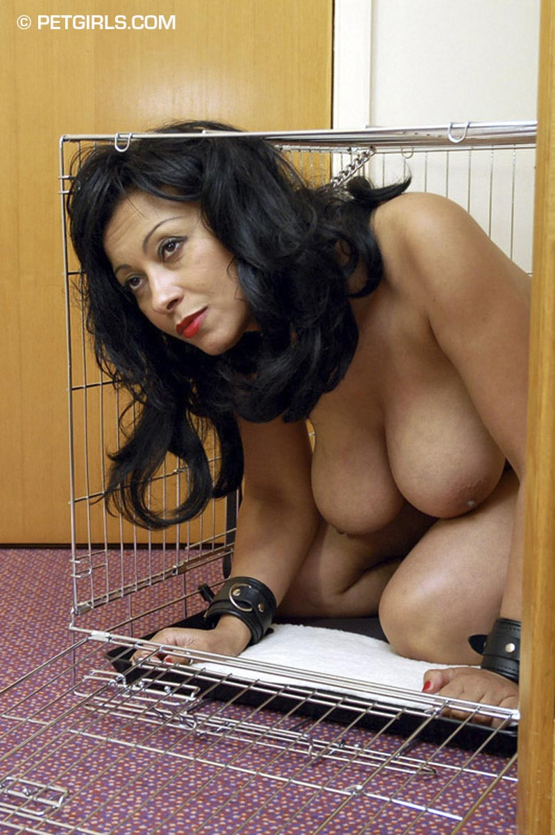Beautiful Danica Collins is put in pet cage and waiting for her training to begin